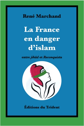 Couverture La France en danger d'islam